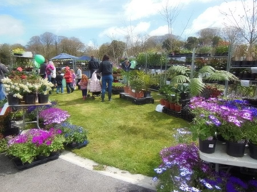 Fota House Plant and Garden Fair 2016