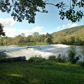 Ballincollig Regional Park - Ring of Cork