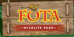 Music in Community presents Summer Concert Series at Fota Wildlife Park - Ring of Cork