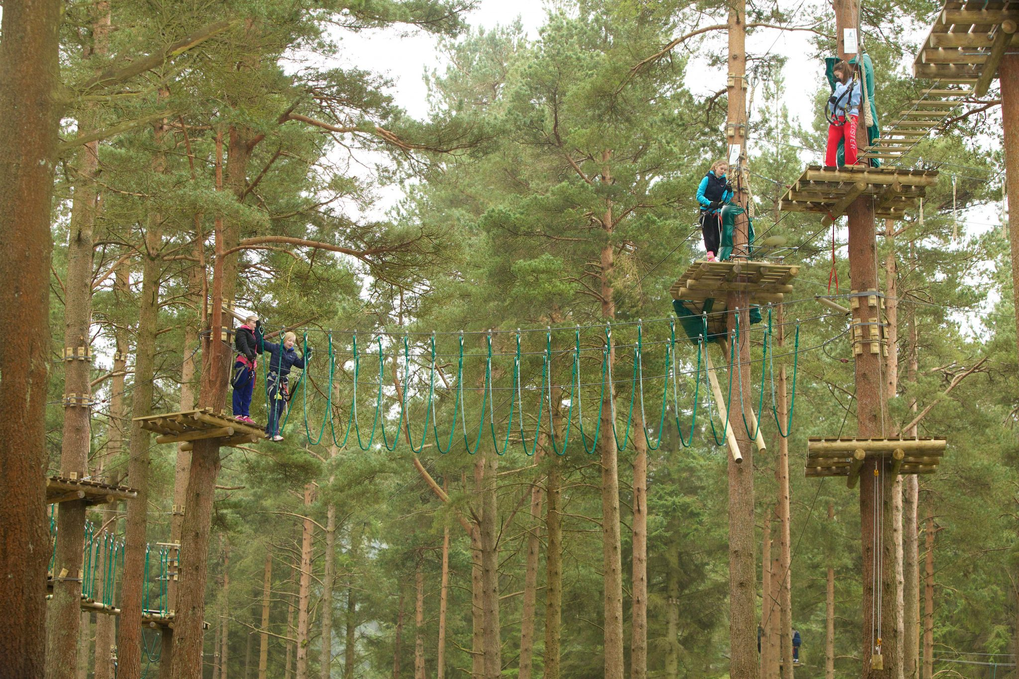 www.ringofork.ie | Ring of Cork | ZIPit Forest Adventure