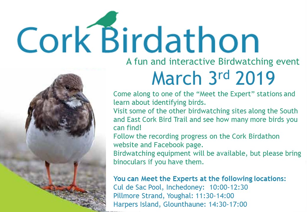 www.ringofcork.ie | Ring of Cork | Cork Birdathon 2019