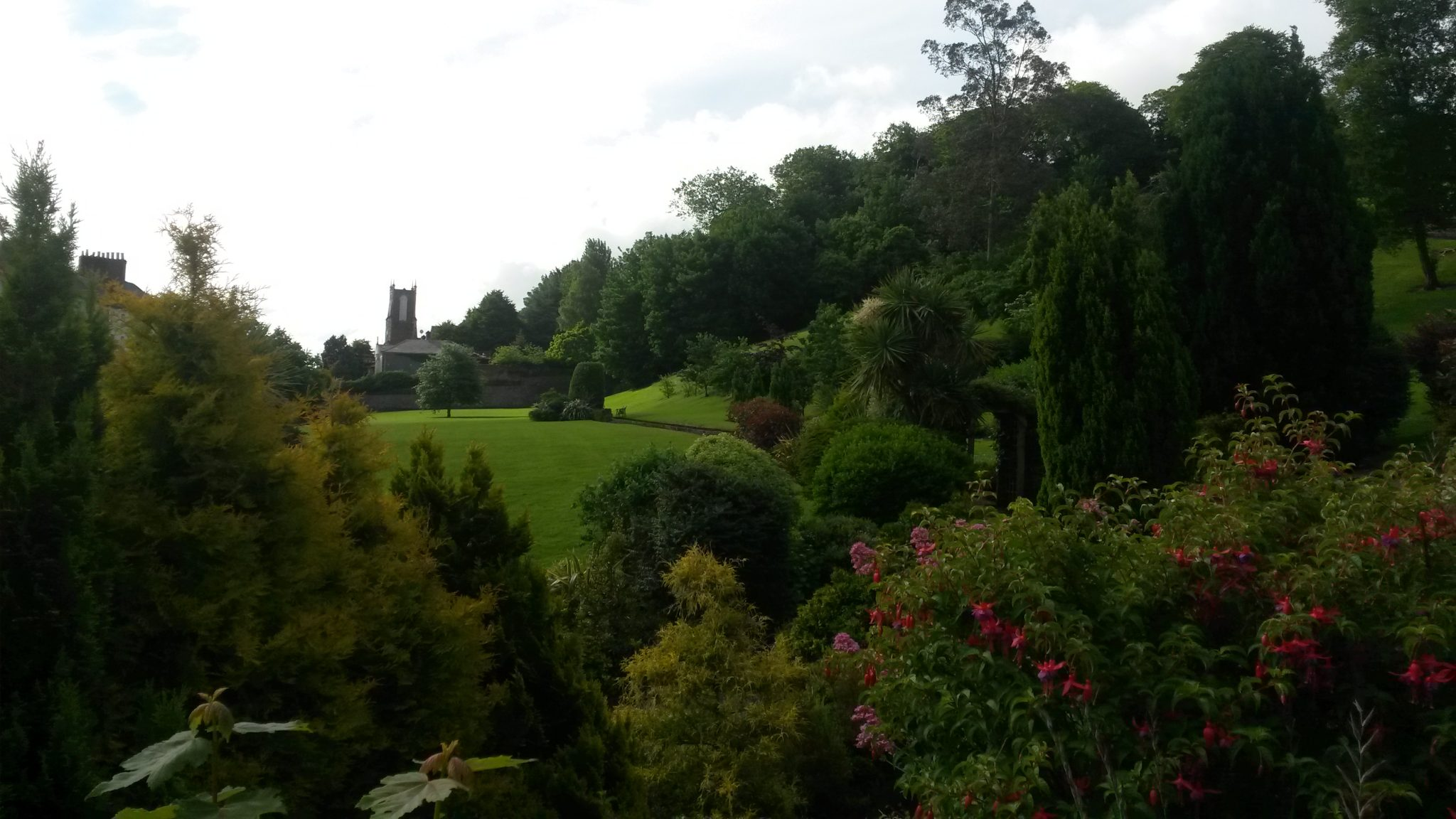 Youghal College Gardens