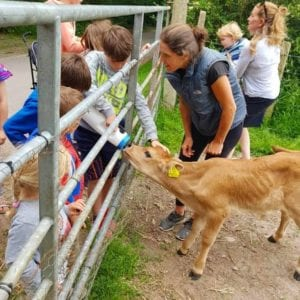 Ballymaloe Cookery School Kids Farm Walk | Ring Of Cork | www.ringofcork,ie