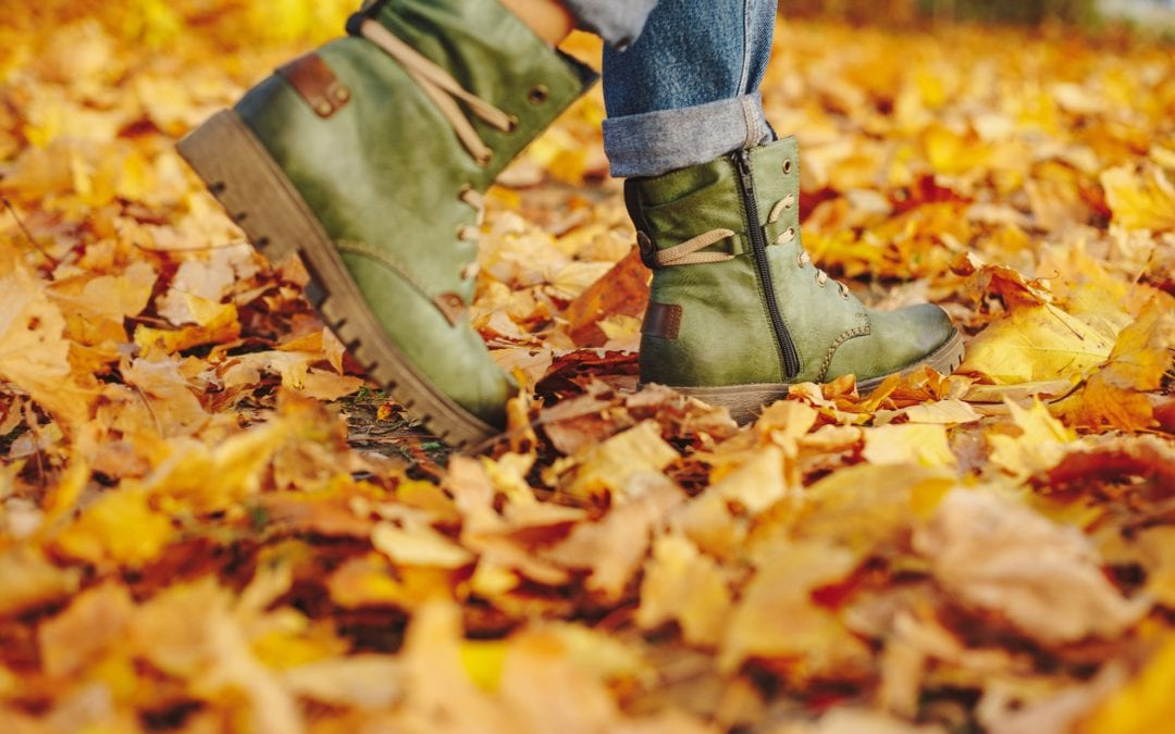Spectacular Autumn Walks Along The Ring of Cork