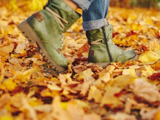 Autumn Walks in the Ring of Cork | www.ringofcork.ie | Ring of Cork