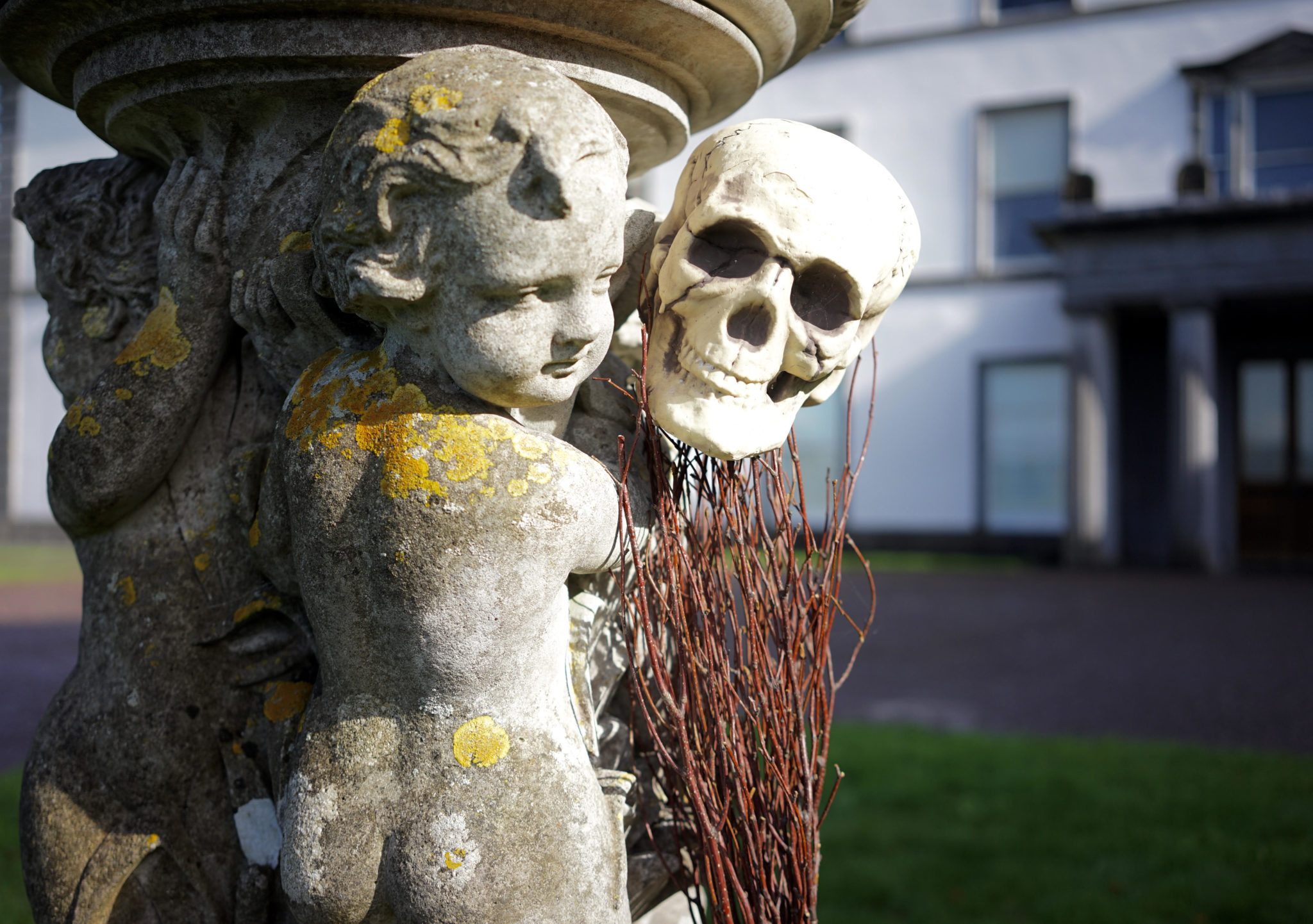 Halloween Creepy Crawl | Ring of Cork | www.ringofcork.ie